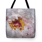 Peony In Dew Tote Bag