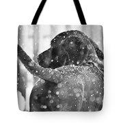 Pepper At Snow Tote Bag
