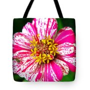 Peppermint Zennia And Spider Tote Bag