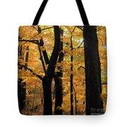 Pequaming Fall Tote Bag