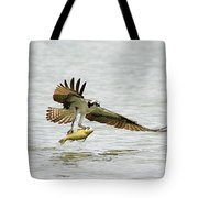 Perch On The Run 2 Tote Bag