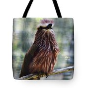 Perched - 2 Tote Bag