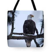 Perched And Proud  Tote Bag