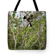 Perched Anhinga Tote Bag