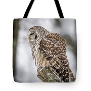 Perched Barred Owl Tote Bag