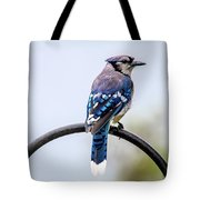 Perched Blue Jay Tote Bag
