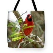 Perched Cardinal Tote Bag