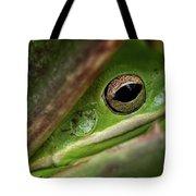 Frogy Eye Tote Bag