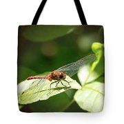 Perched Dragonfly Tote Bag