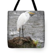 Perched Great Egret Tote Bag