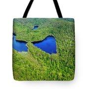 Perched Lake Tote Bag