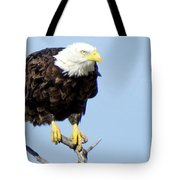 Perched On A Tree Tote Bag