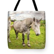 Percherons Horses Tote Bag