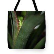Perching With Comfort Tote Bag