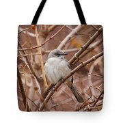 Perching On A Winter's Day  Tote Bag