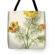 Perennial Adonis Tote Bag