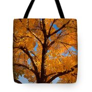 Perfect Autumn Day With Blue Skies Tote Bag