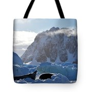 Perfect Day. Tote Bag