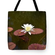 Perfect Lily  Tote Bag