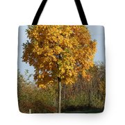 Perfect Little Tree Tote Bag