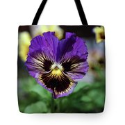 Perfect Pansy  Tote Bag
