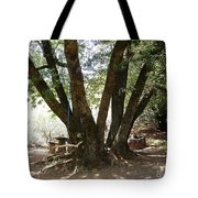 Perfect Picnic Tree Tote Bag
