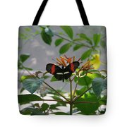 Perfect Set - Butterfly Tote Bag