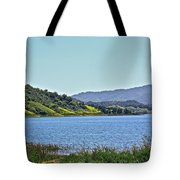 Perfect Spring Day Tote Bag