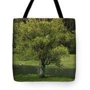 Perfect Tree Swing Tote Bag