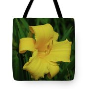 Perfect Yellow Daylily Flowering In A Garden Tote Bag