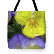 Perfectly Pansy 11 Tote Bag