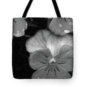 Perfectly Pansy 12 - Bw - Water Paper Tote Bag