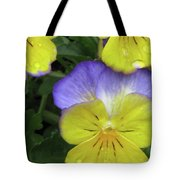 Perfectly Pansy 12 Tote Bag