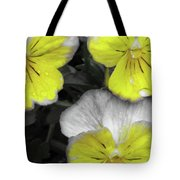 Perfectly Pansy 13 - Bw - Yellow Tote Bag
