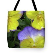 Perfectly Pansy 13 Tote Bag