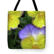 Perfectly Pansy 14 Tote Bag