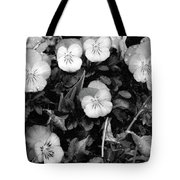 Perfectly Pansy 18 - Bw - Water Paper Tote Bag