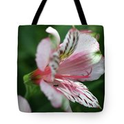 Perivian Lily With Ant Tote Bag