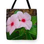 Periwinkle Flower 2 Tote Bag