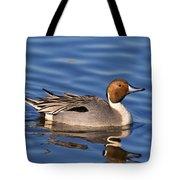 Perky Pintail Tote Bag