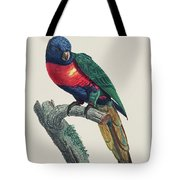 Perruche A Tete Bleue, Male / Rainbow Lorikeet, Male - Restored 19th Cent. Illustration By Barraband Tote Bag