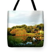 Perry Reflection Photo Tote Bag