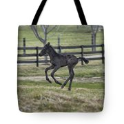 Perry's Colt Running Tote Bag
