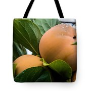 Persimmons Ready For Harvest Tote Bag