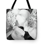 Peruvian Lilies  Flowers Black And White Print Tote Bag