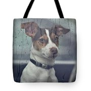 Pet Looking Out Car Window On Rainy Day Tote Bag