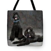 Pet Partners #346 Tote Bag