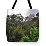 Peters Canyon In The Rain 8 Tote Bag