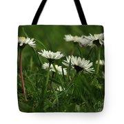 Petite Daisies 5 Tote Bag