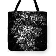 Petite Noir Petals Tote Bag